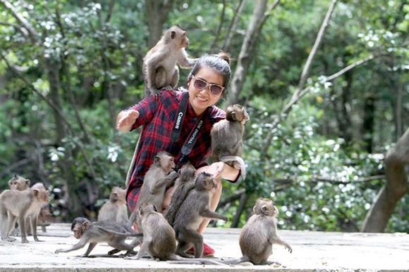 Đảo khỉ Cần Giờ