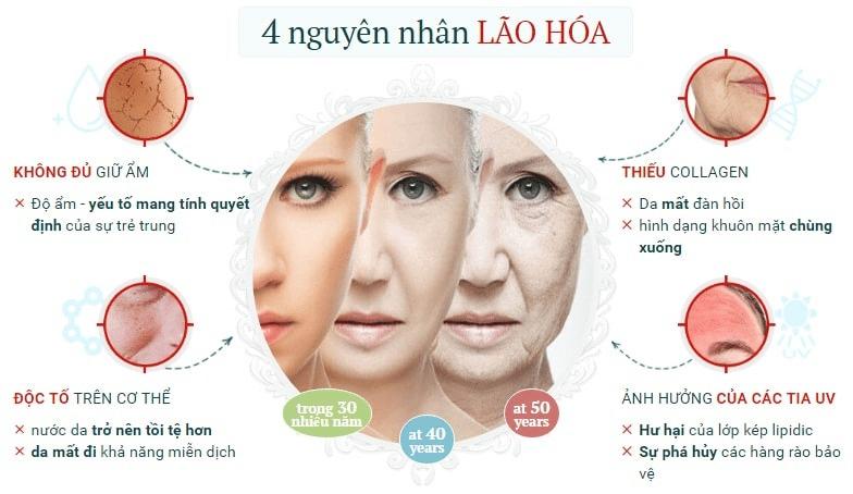 Những nguyên nhân chính gây lão hóa da